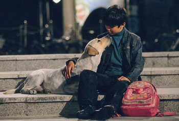 hearty paws korean full movie download